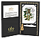 Holly and Ivy w/gold Presentation Box